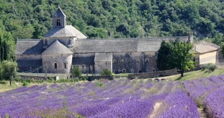 Provence day trip from marseille Abbey of Senanque