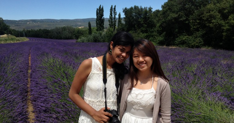 Full day tour Avignon and Luberon hilltop villages