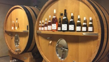 Enjoy a wine tour in Cassis with Provence Explorer